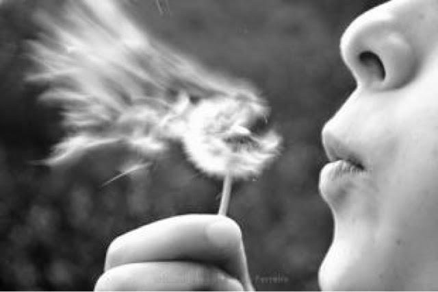 Deixe novos ventos soprarem sobre você...