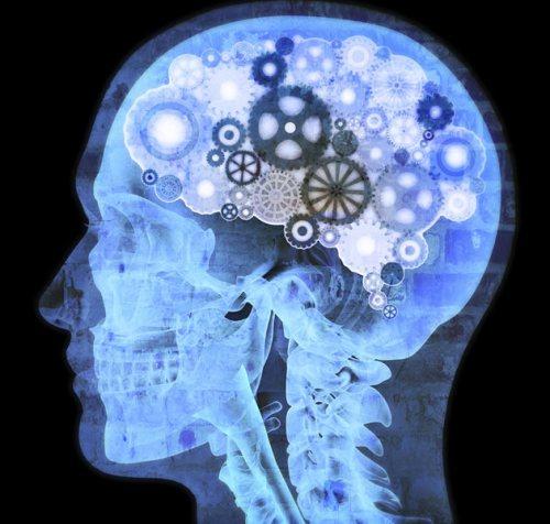 cerebro-faxina-sono-solunni