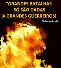 leao fogo