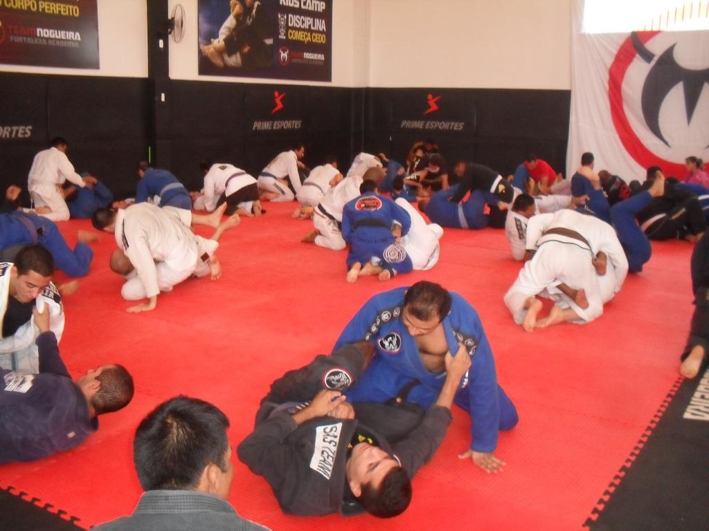 Atletas de jiu-jitsu, MMA, boxe e muay thai serão beneficiados. Foto: Divulgação