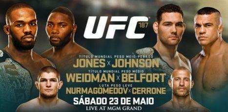 Banner do UFC 187 | Foto: divulgação