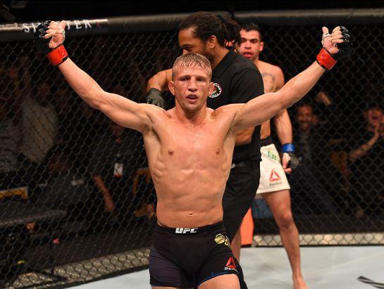 Dillashaw ergue os braços após nocautear Barão | Foto: UFC/Divulgação