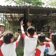 Crianças de uma escola municipal de Fortaleza irão visitar o Parque Ambientel e Ecológico (PAZ) nessa segunda-feira. Foto: O POVO