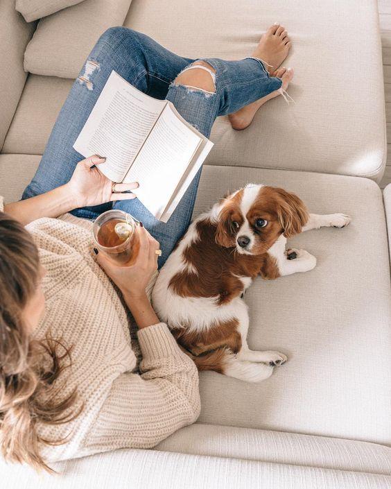 Cachorro ao lado de uma pessoa lendo e bebendo suco