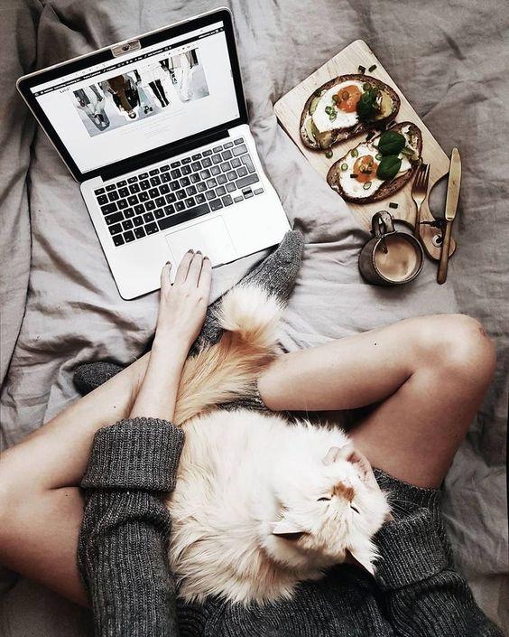 Cachorro deitado nas pernas de uma pessoa que trabalha com um notbook