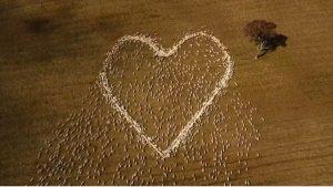 Fazendeiro faz coração de ovelhas como homenagem para tia que faleceu de câncer