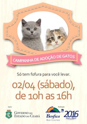 Campanha de Adoção de Gatos