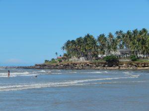 Praia da Taíba ( Foto: Natália Fonteles).