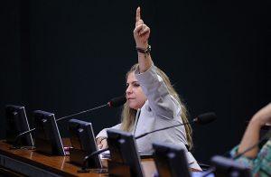 Luizianne defende saída de Temer e novas eleições diretas (Foto: Divulgação/Câmara dos Deputados)