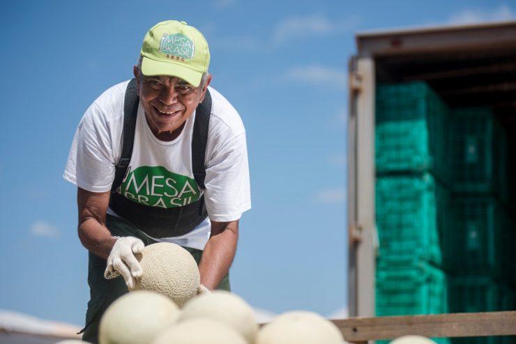Doações: na imagem, homem do programa Mesa Brasil trabalhando na organização de melões