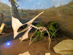 Residência Artística em Paleoarte: pintura de um fóssil que parece ser uma ave jurássica.