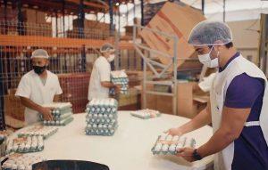 Mesa Brasil: trabalhadores de máscara e touca descartável embalam e seguram bandejas de ovos brancos em um armazém